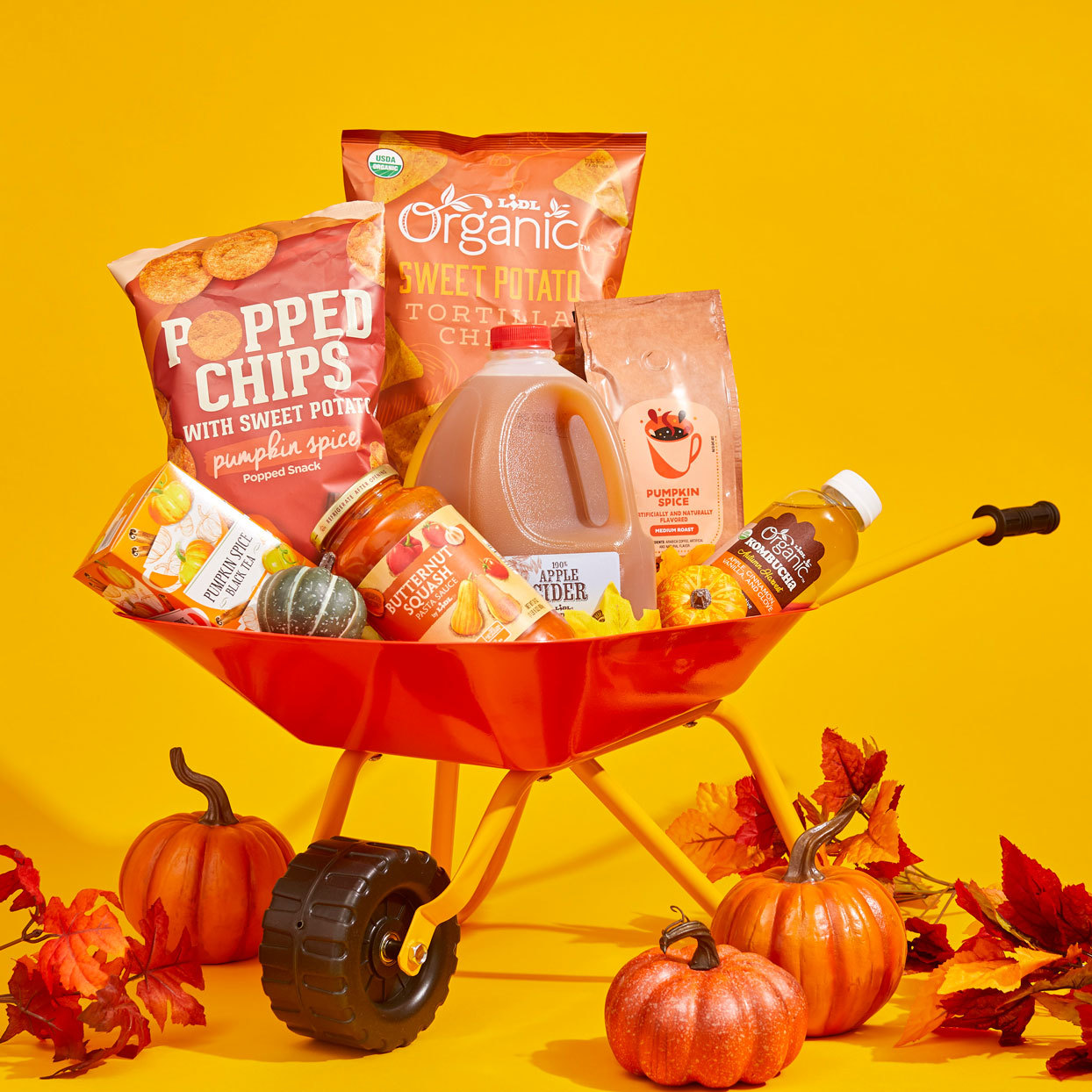 10 New Fall Products Coming to Lidl This Month