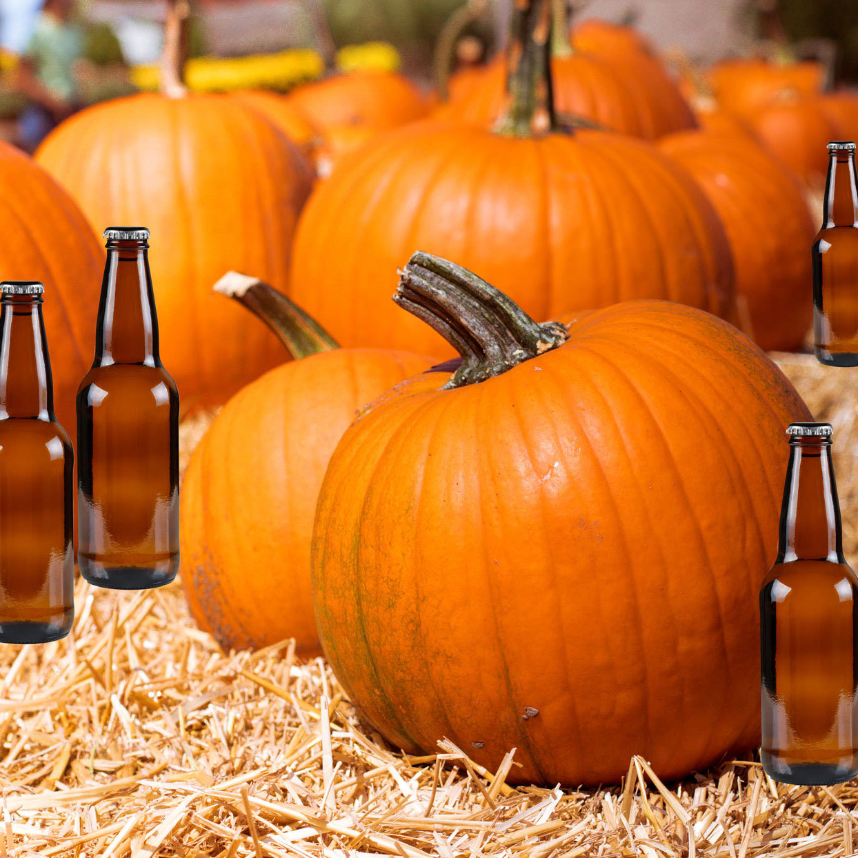 We Tried All the Pumpkin Beers We Could Find—Here Are the 2 Worth Buying