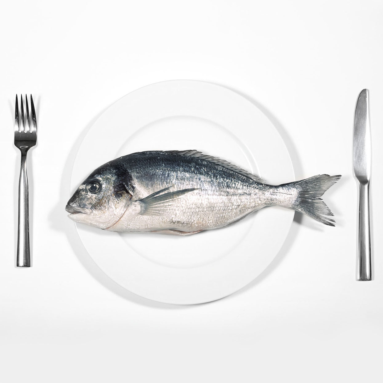 I've Been Vegan for 5 Years, but I'm Starting to Eat Fish Again—Here's Why